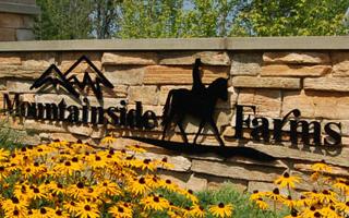 Communities in Mountainside Farms